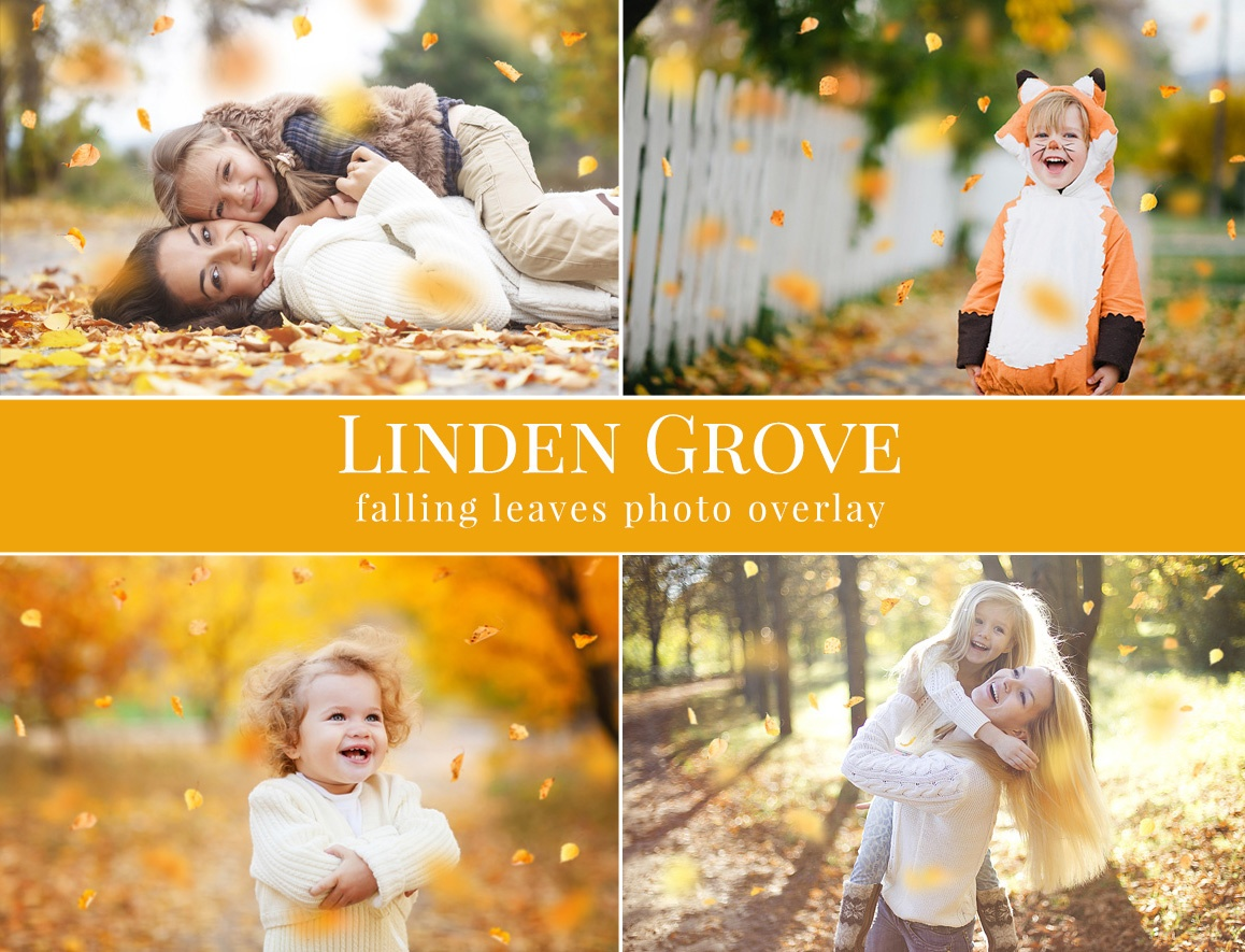 Linden Grove – Preview