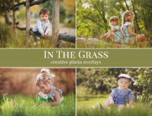 grass photo overlays