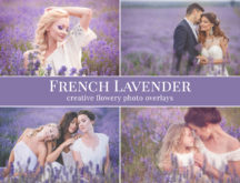 lavender photo overlays