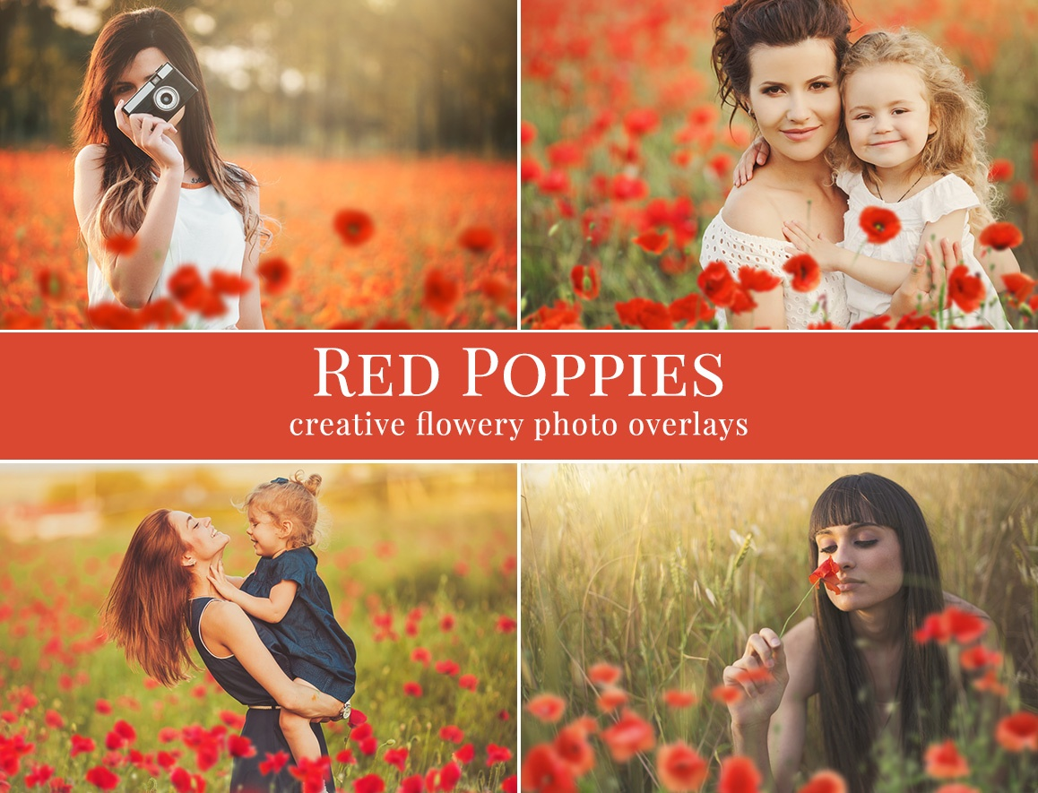 red-poppies-preview