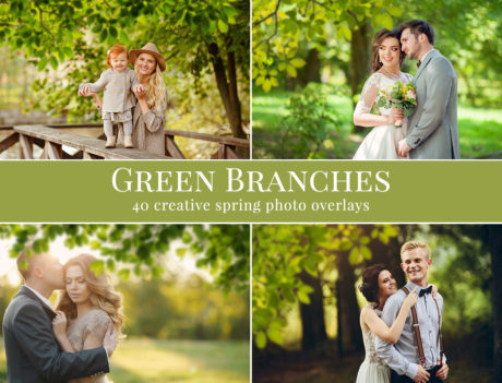 branches photo overlays