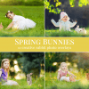 bunnies photo overlays