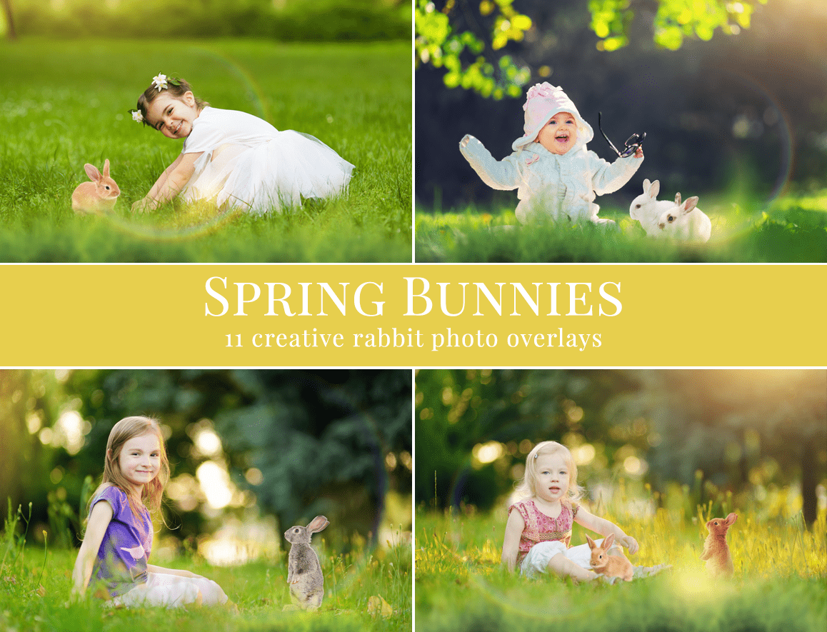 Spring-Bunnies-Photo-Overlays—Preview