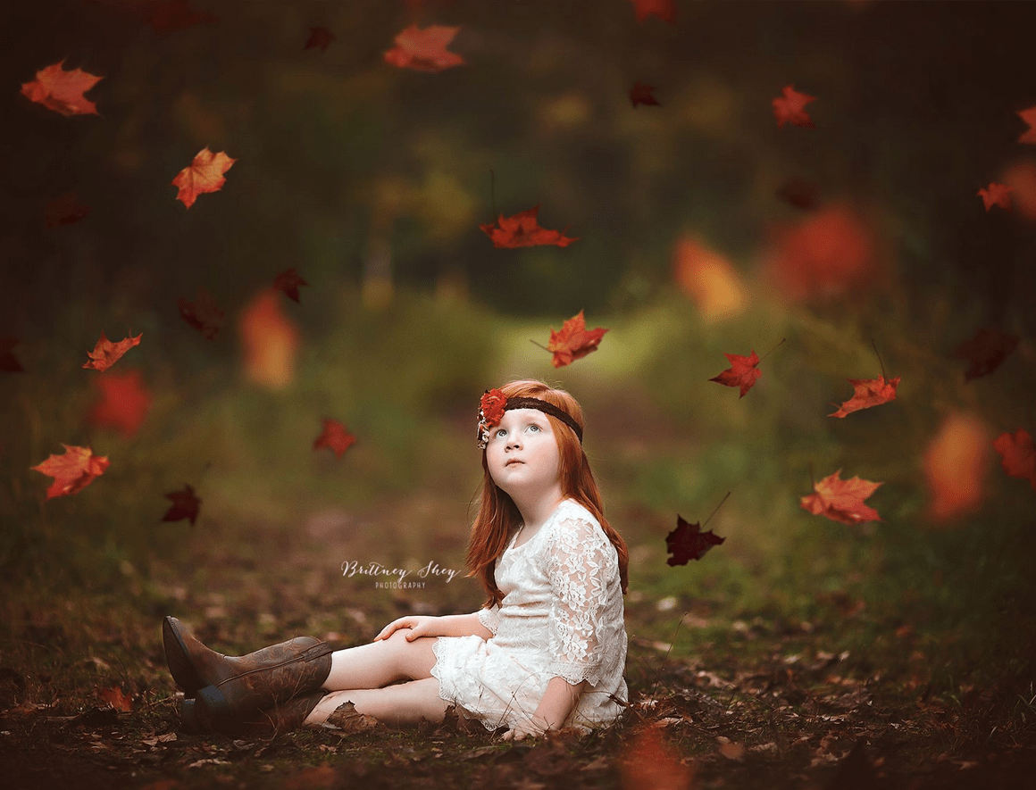 falling leaves overlays