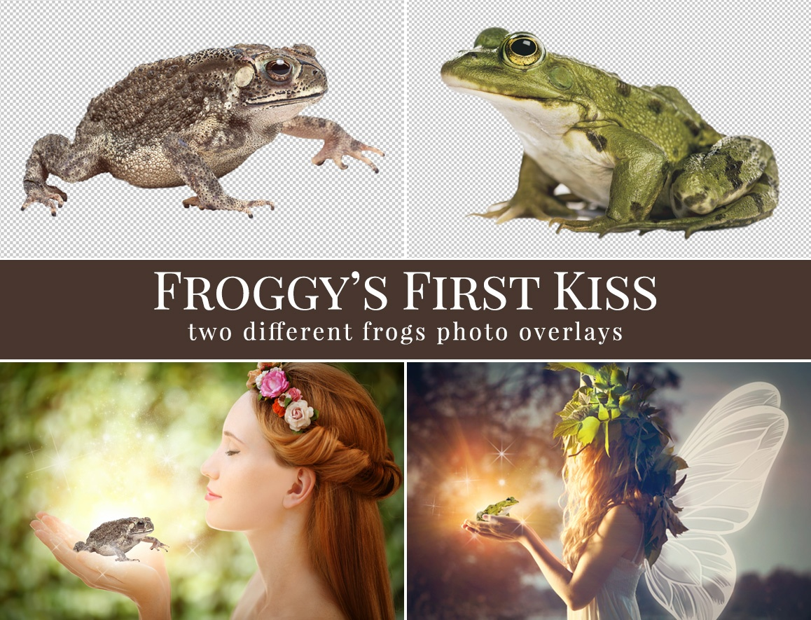 frog photo overlays