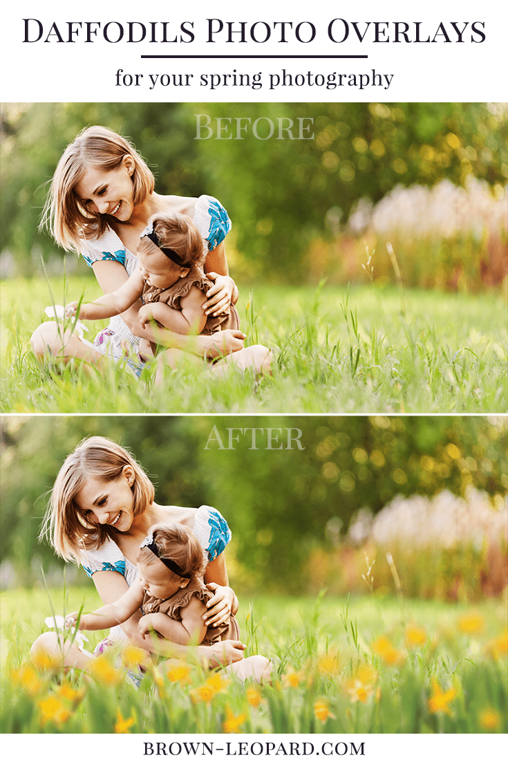 30 different daffodils flowers photo overlays. Great for spring photography - spring mini sessions, kids, family & portrait pictures. Drag & drop - very easy to use, fast and simple. Original results just in few seconds. Professional spring photo overlays for Photoshop, Zoner, Gimp, PicMoneky, Canva, etc. Photo overlays for creative photographers from Brown Leopard.
