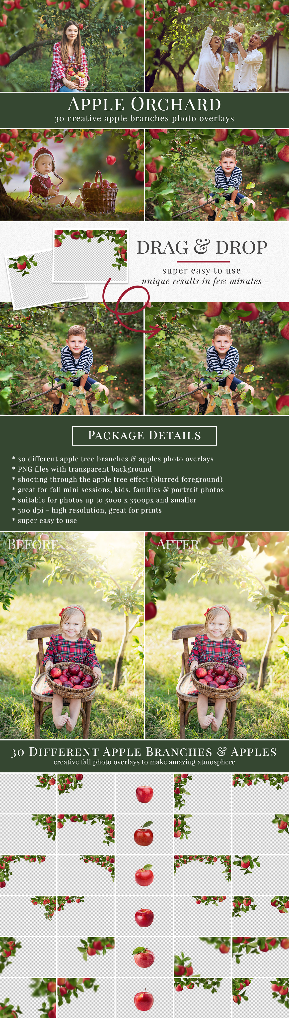 30 different apple branches photo overlays. Great for your fall photography - fall mini sessions, kids, family & portrait pictures. Drag & drop - very easy to use, fast and simple. Original results just in few seconds. Professional autumnal photo overlays for Photoshop, Zoner, Gimp, PicMoneky, Canva, etc. Photo overlays for creative photographers from Brown Leopard.