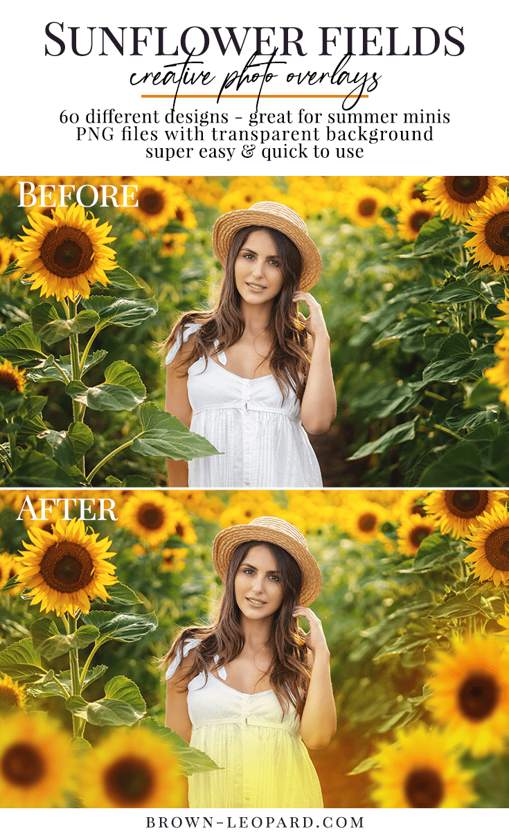 Enhance your summer photography, style amazing scenes with our sunflower photo overlays! 60 different sunflower designs - flowers, petals, leaves, haze & pre-made scenes. Great for portraits, kids, families, wedding & all outdoor photography. Drag & drop - very easy to use, fast and simple. Original results just in few seconds. Professional summer photo overlays for Photoshop, Zoner, Gimp, PicMoneky, Canva, etc. Photo overlays for creative photographers from Brown Leopard.